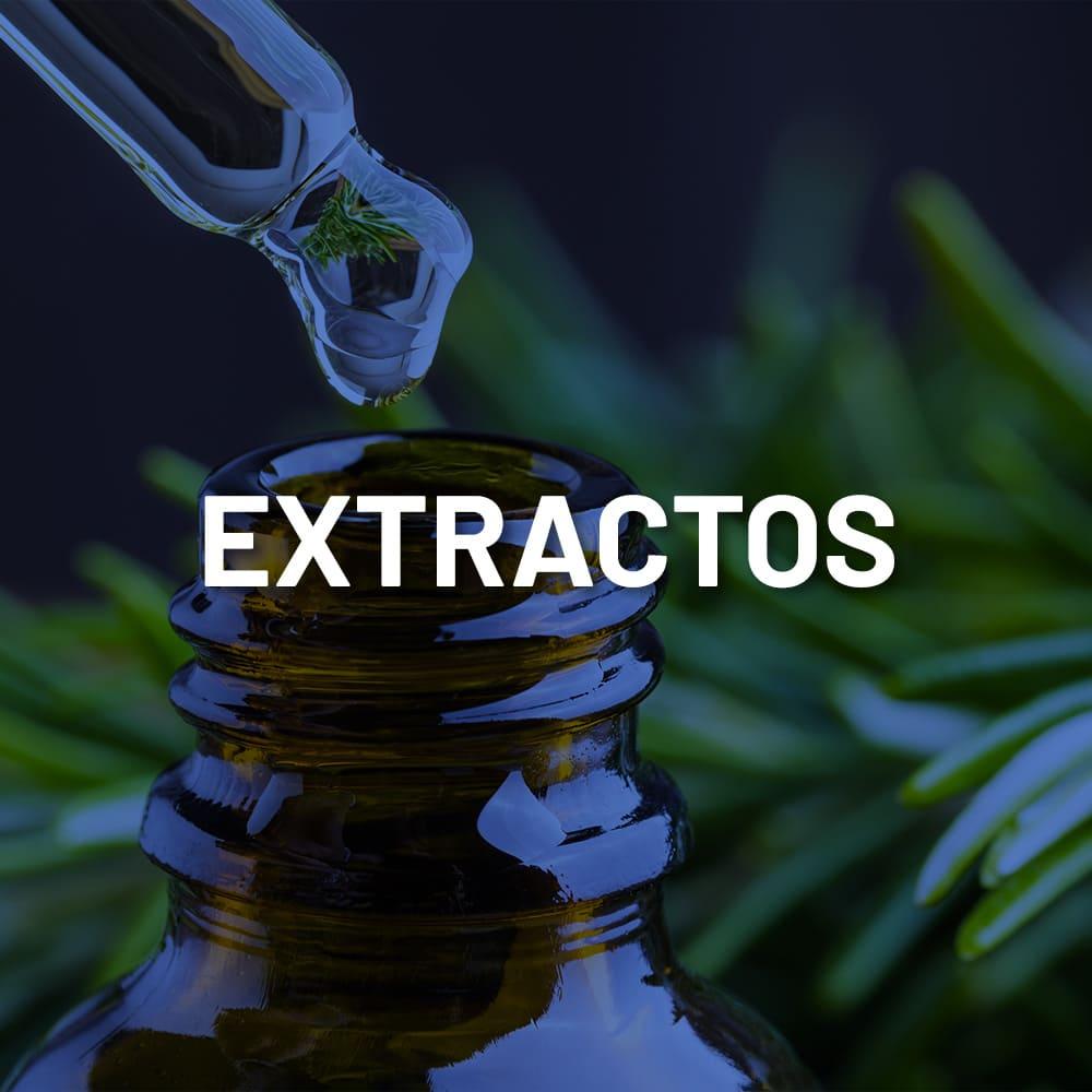 Mayoreo-Extractos-1